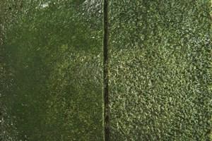 Bellattex Concrete Counter Tops vs. Granite